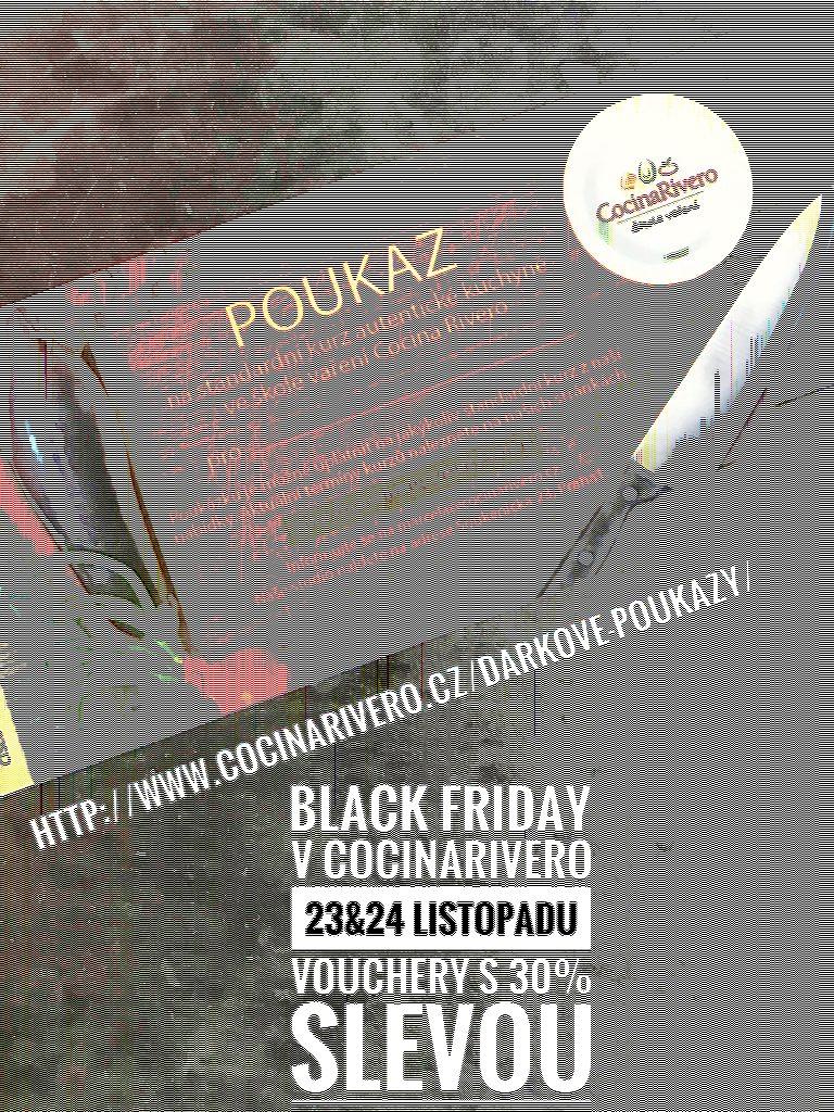 Black Friday - 30% sleva