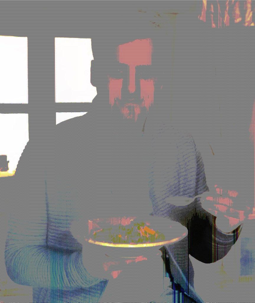 Skoda Soups course